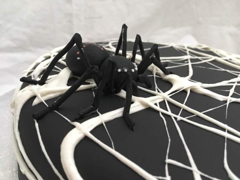 Spinnen-Torte2